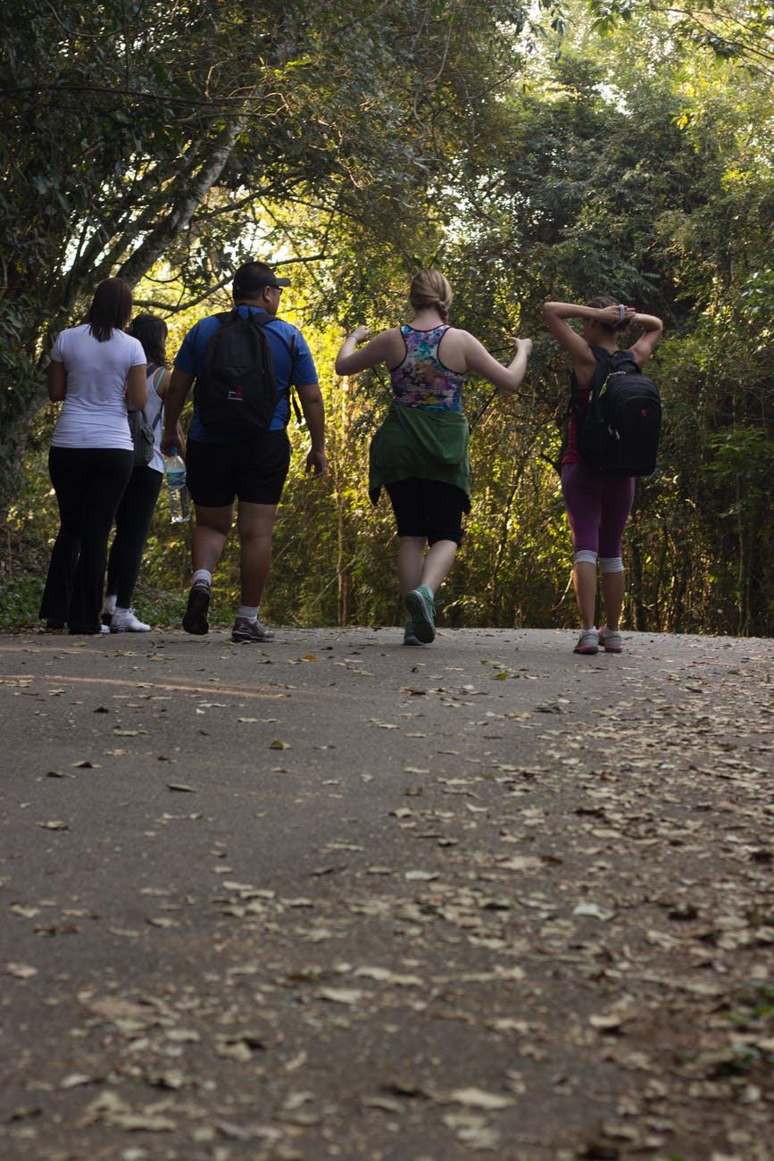 Walking Program Guidelines